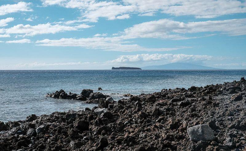 Snorkeling_in_Maui-24