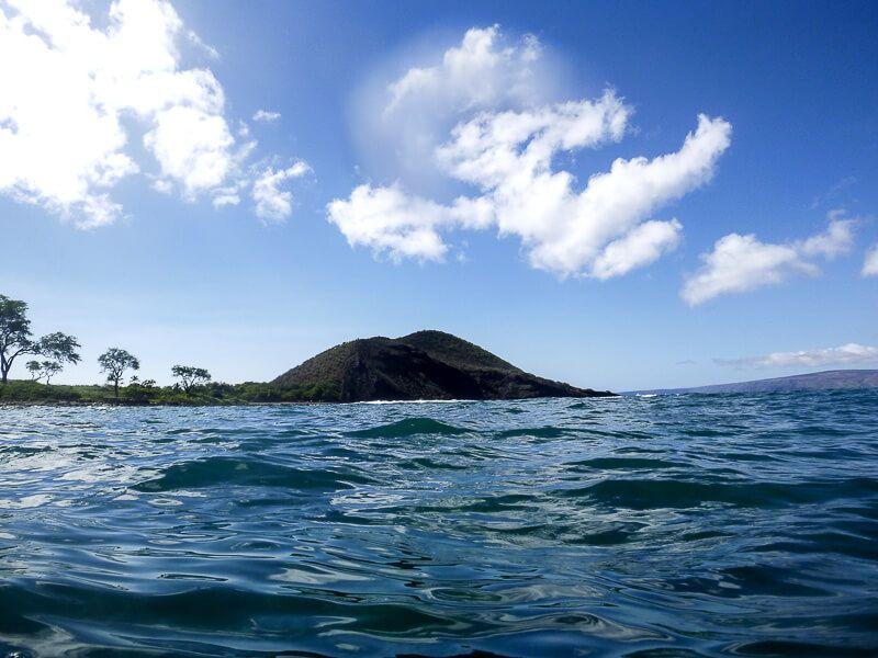Snorkeling_in_Maui-7