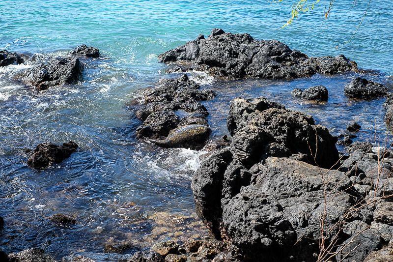 Snorkeling_in_Maui-8