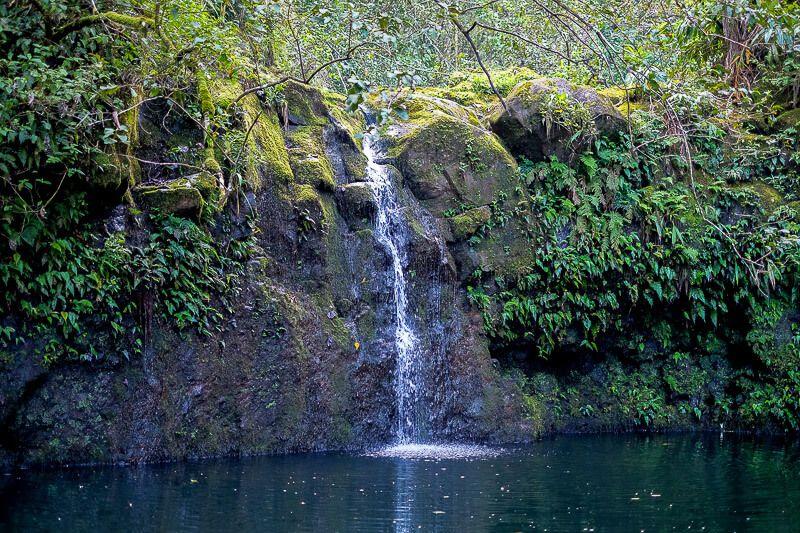 Road to Hana Guide: Haipua'ena Falls