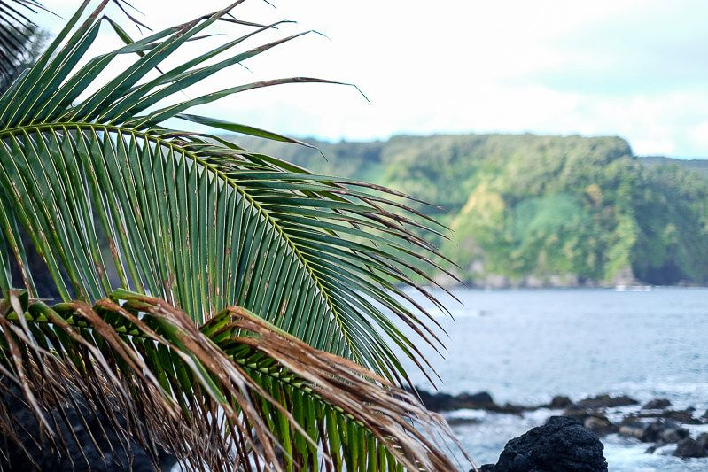 Road to Hana Guide