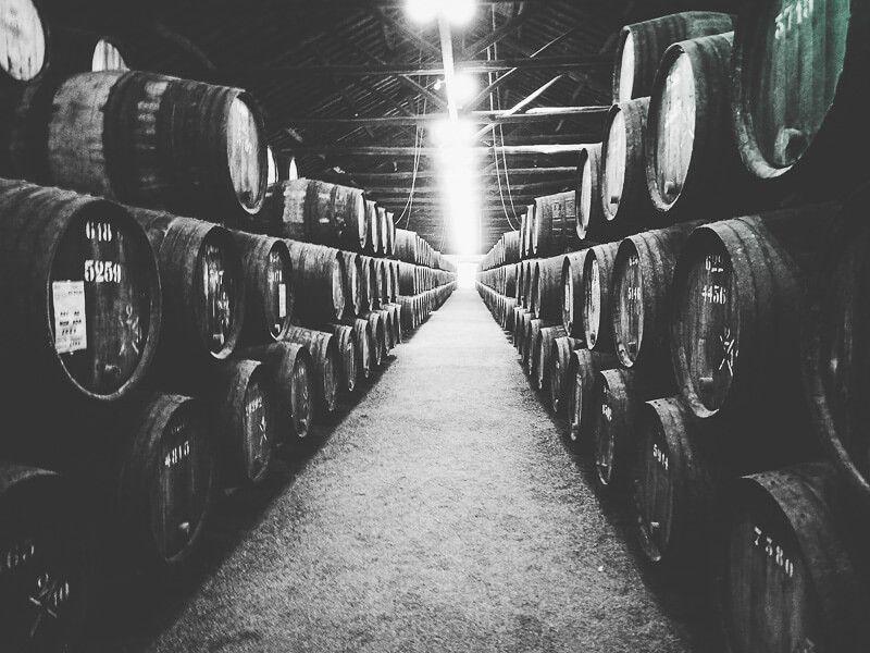 Taylor's port wine cellar tour
