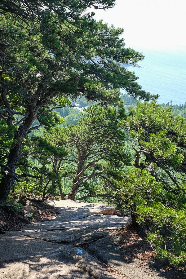 Hiking The Beehive Trail
