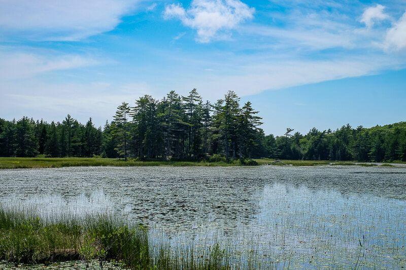 Biking Acadia National Park