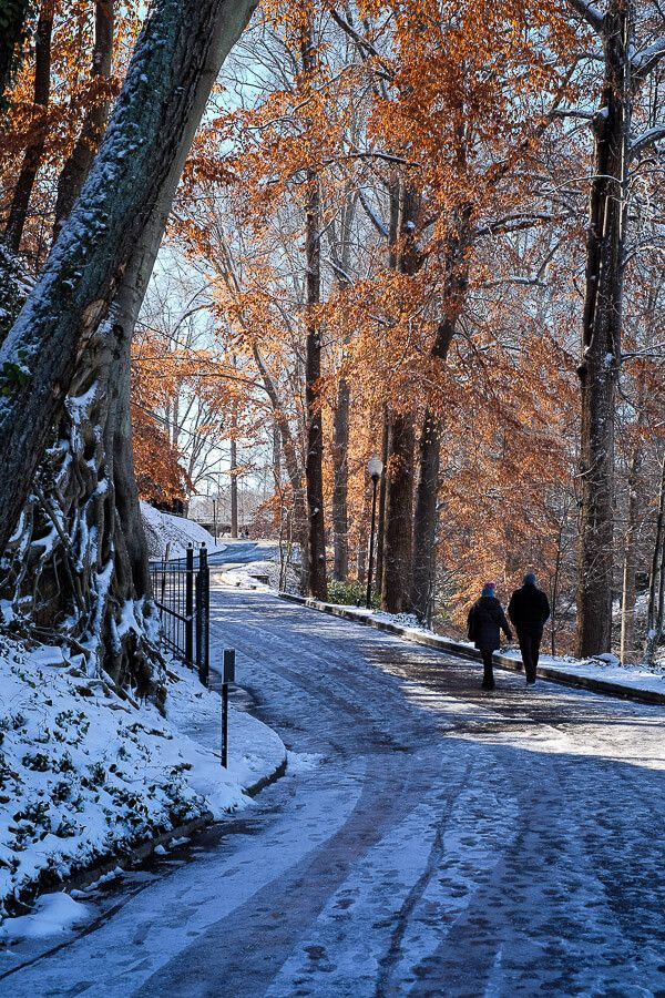 Falls Park: Greenville, SC in the Snow