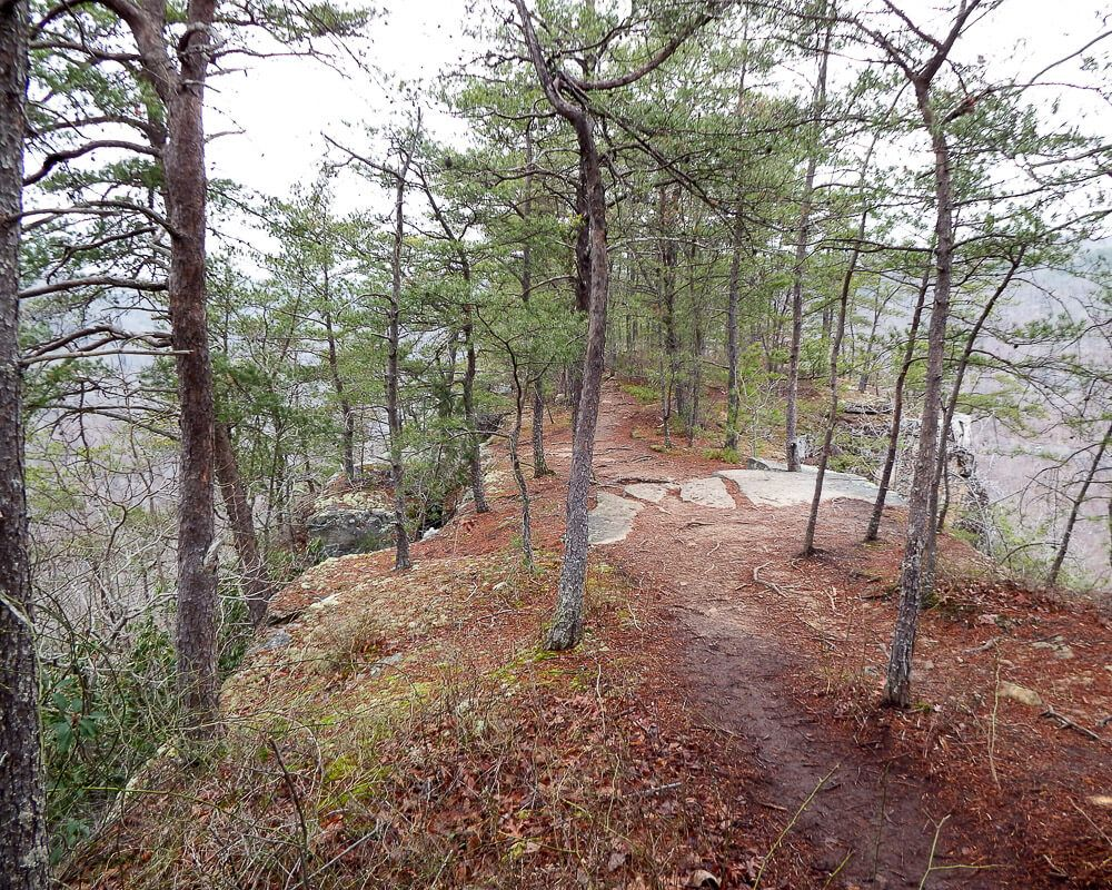 Hiking in Fayetteville, WV