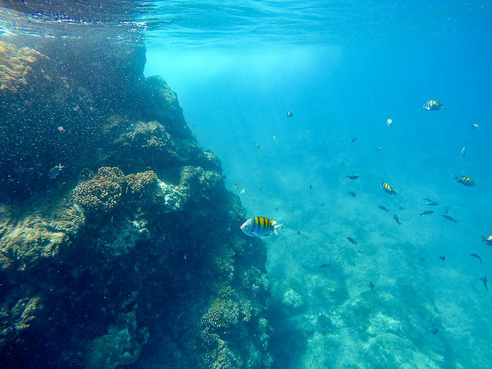 10 day Costa Rica Budget: Cano Island