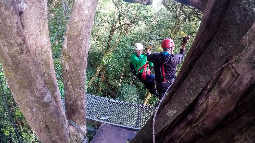 Monteverde Zip Line Tour with Original Canopy Tour