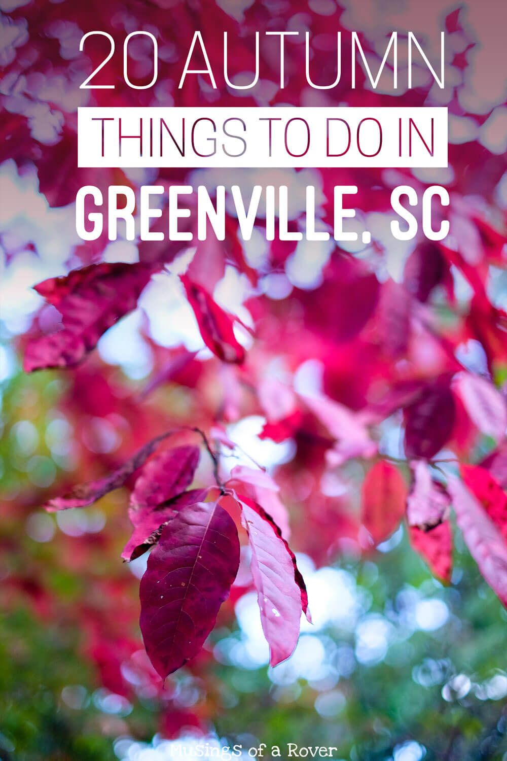 Traveling to Greenville, South Carolina this fall or autumn? Or are you a local looking for something to do this weekend? Here are 20 things to keep you busy! Everything from fall festivals, events, movies in the park, beer festivals, and renaissance fairs to everyday activities like hiking Paris Mountain, picking apples, drinking seasonal brews, taking a day trip to visit some waterfalls, biking the swamp rabbit trail, or haunted houses and Halloween events. travel tips, travel advice, greenville sc things to do, greenville south carolina things to do