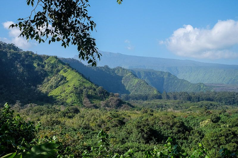 Road to Hana Guide: Wailua Valley State Wayside