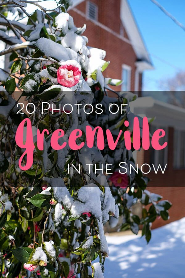 It only happens once a year, but Greenville, SC does get its fair share of winter storms. Here are 20 photos to show you what this city looks like blanketed in snow!
