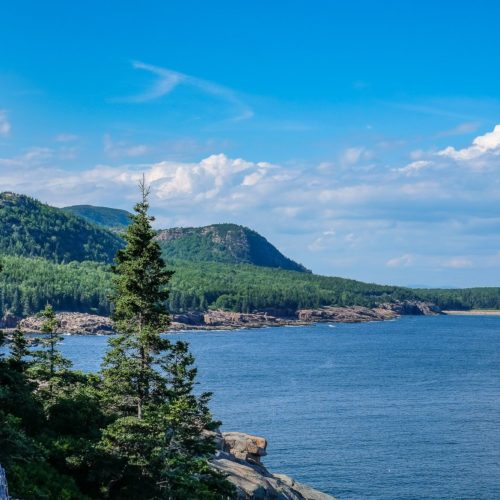 Things to do in Acadia National Park: Otter Cliffs