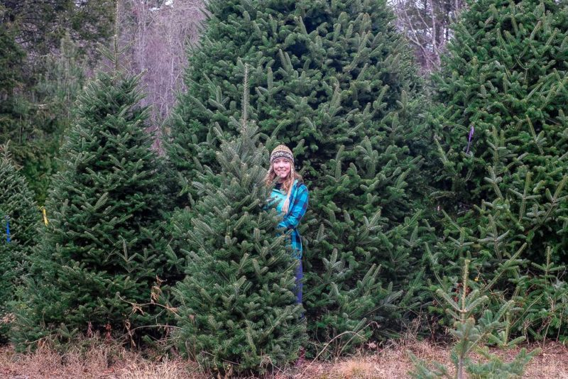 things to do in greenville in winter