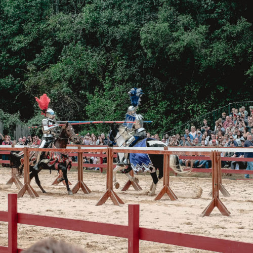 Carolina Renaissance Festival - 5 tips for your visit