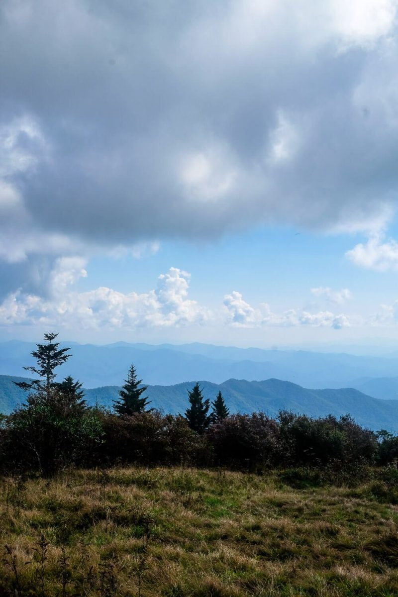 Andrews Bald Hike - Great Smoky Mountains National Park