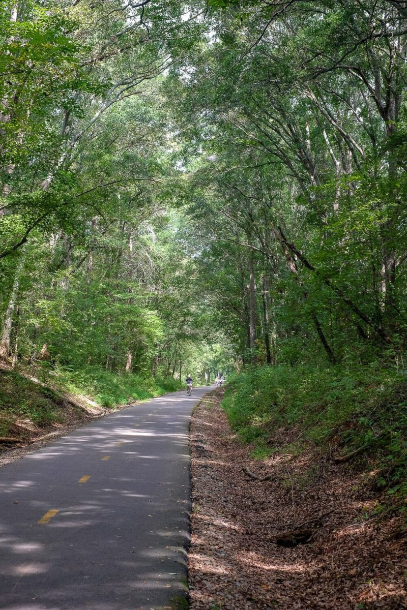 things to do in greenville in spring