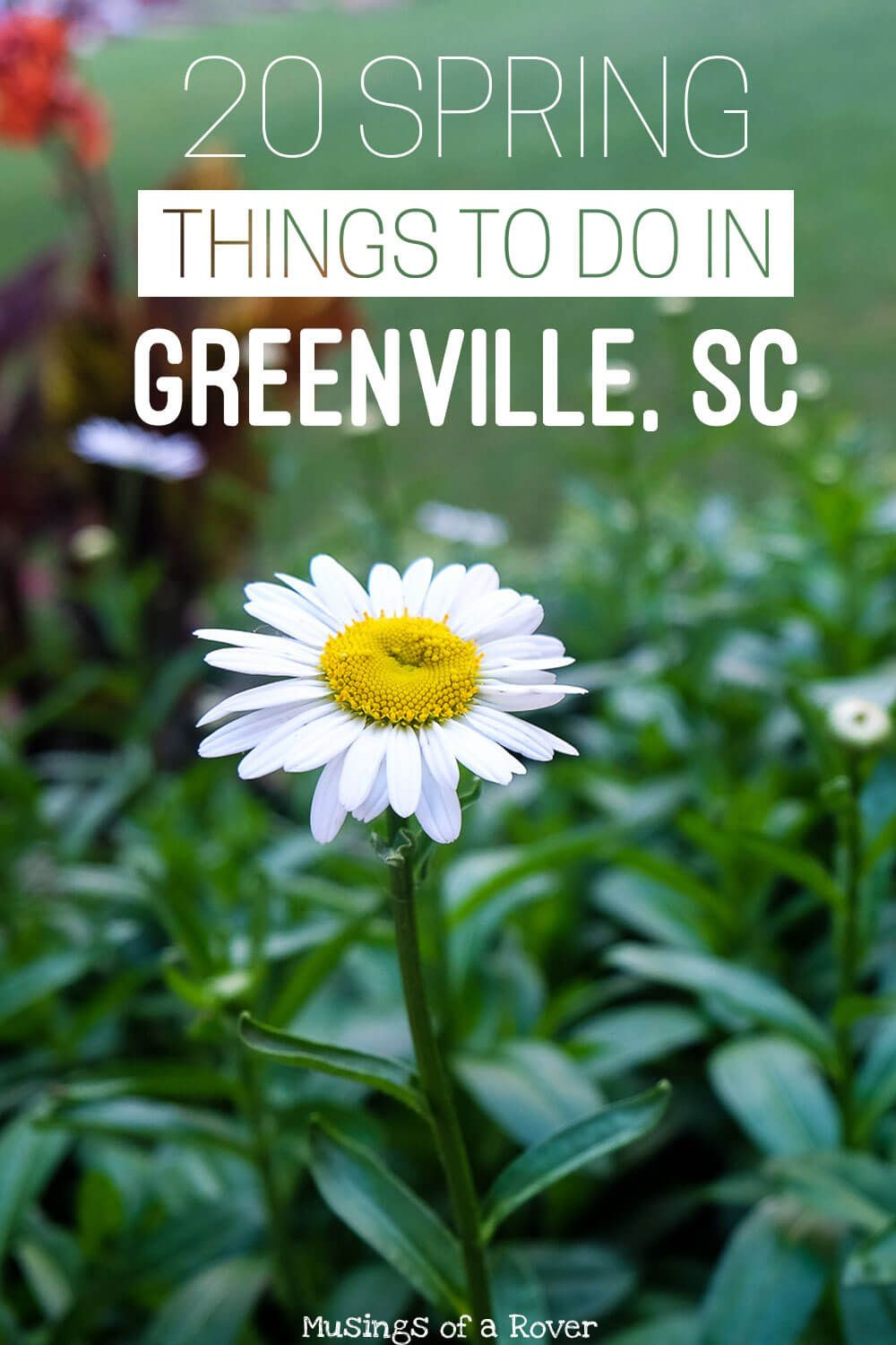 Traveling to Greenville, South Carolina this spring? Or are you a local looking for something to do this weekend? Here are 20 things to keep you busy! Everything from holiday celebrations and festivals to everyday activities like biking the swamp rabbit trail, nearby day-trips to chimney rock, picking strawberries, and more. travel tips, travel advice, greenville sc things to do, greenville south carolina things to do