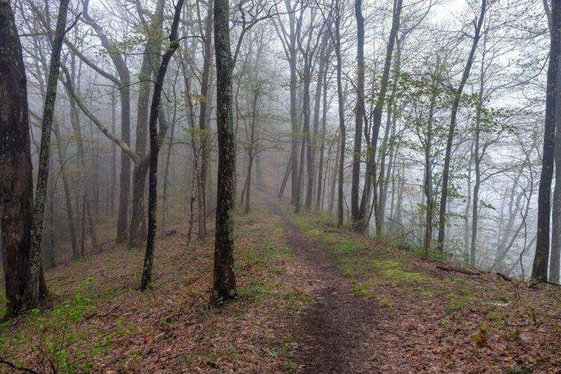 Rich Mountain Loop: Indian Grave Gap Trail
