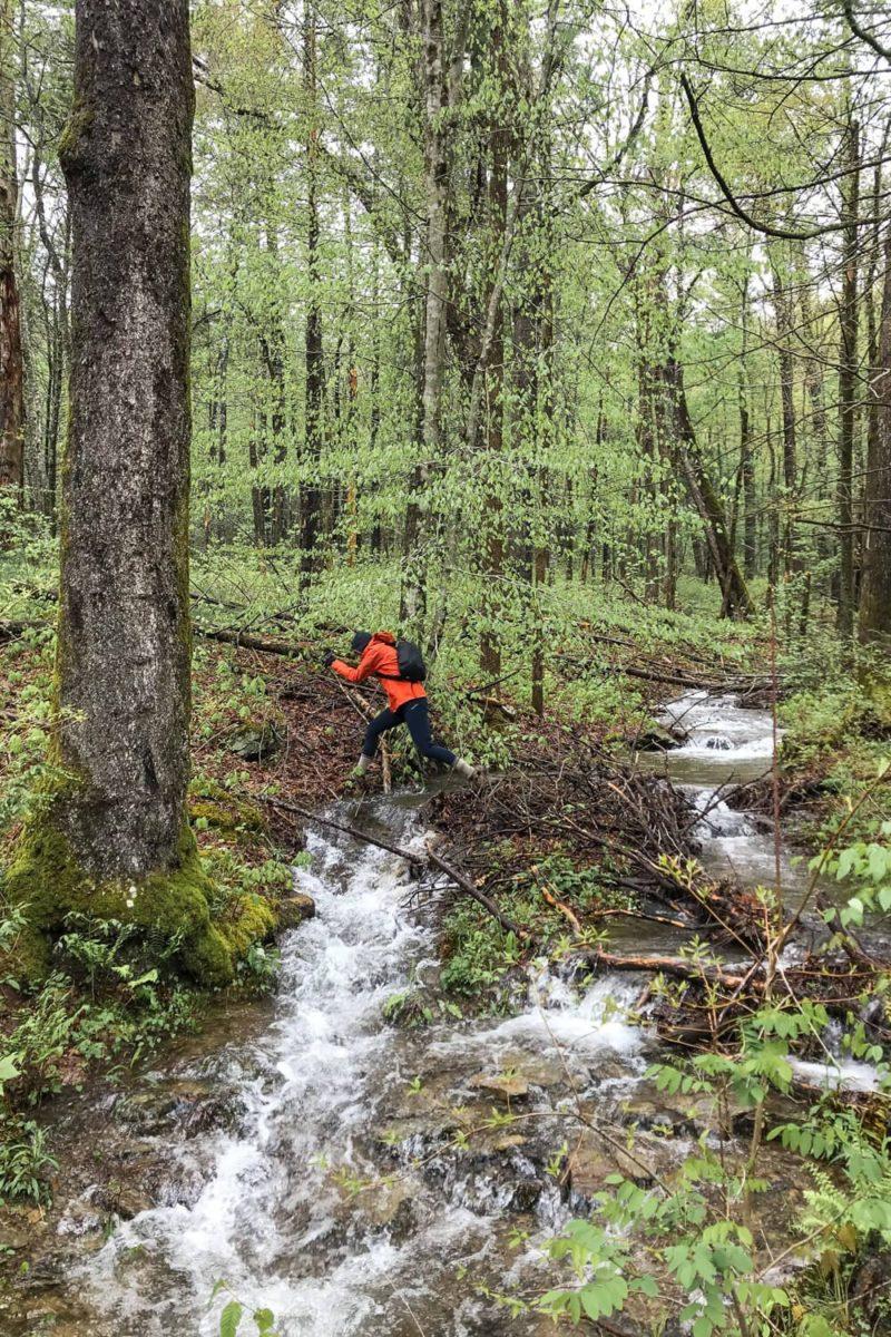 Rich Mountain Loop Trail Stream Crossing