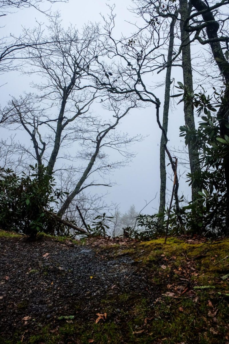 Rich Mountain Loop Trail: Indian Grave Gap Trail