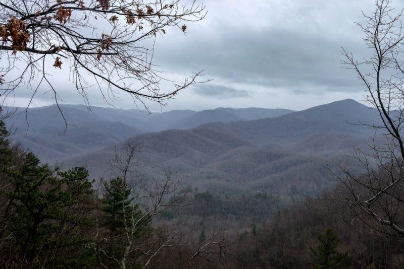 Laurel Falls Trail View