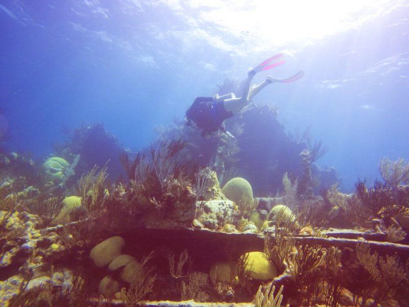 Diving in Bermuda