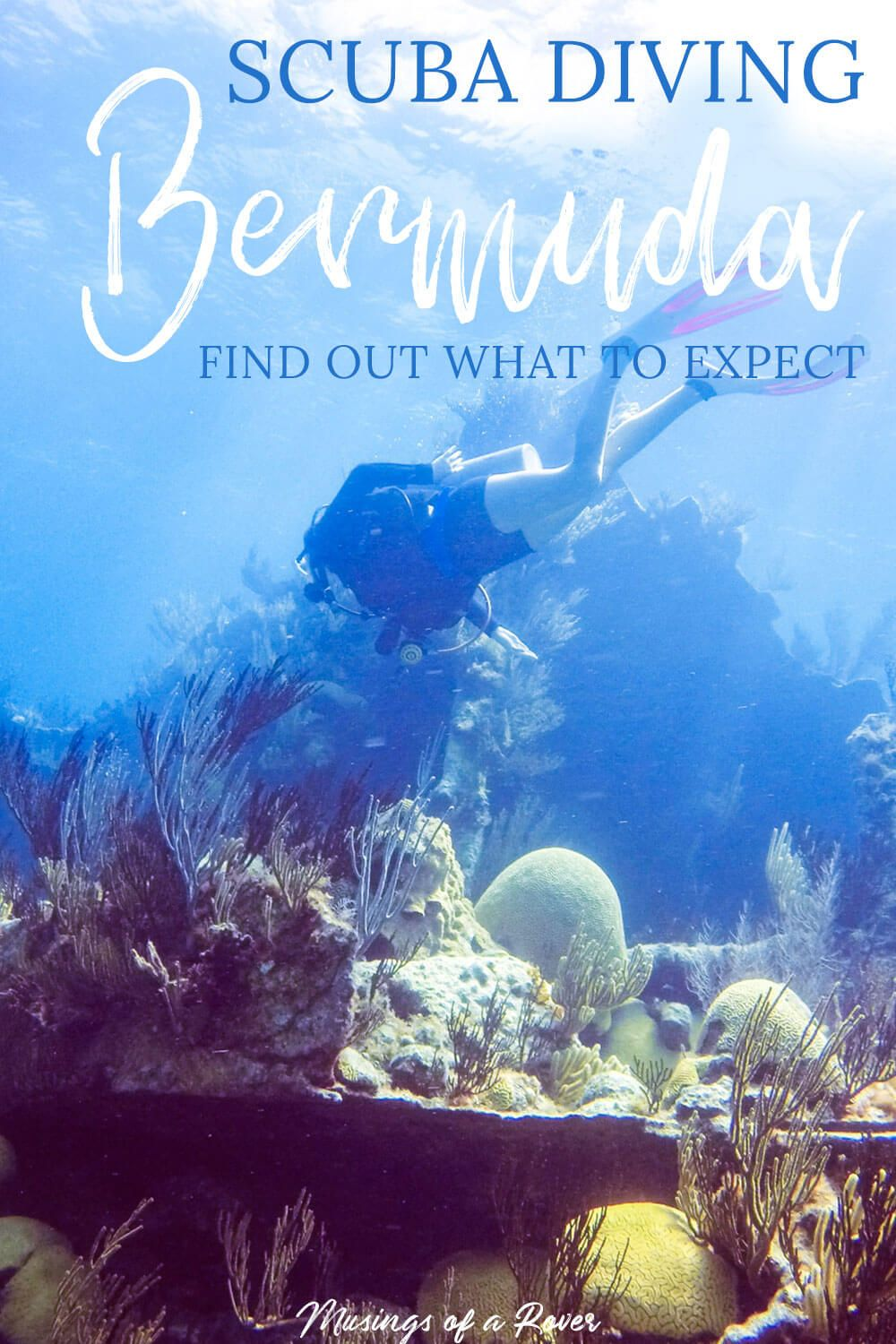 Scuba diving in Bermuda is must for your trip! Shipwrecks, marine life, & clear waters make this a top diving destination. Find out what to expect! And discover why you should dive with Blue Water Divers. Hint great service, great communication, low(est) price, and small groups!