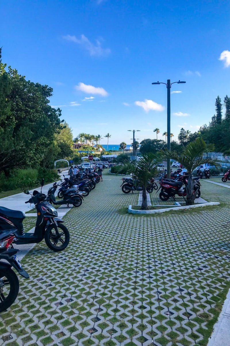 Renting a scooter in bermuda: horseshoe bay parking