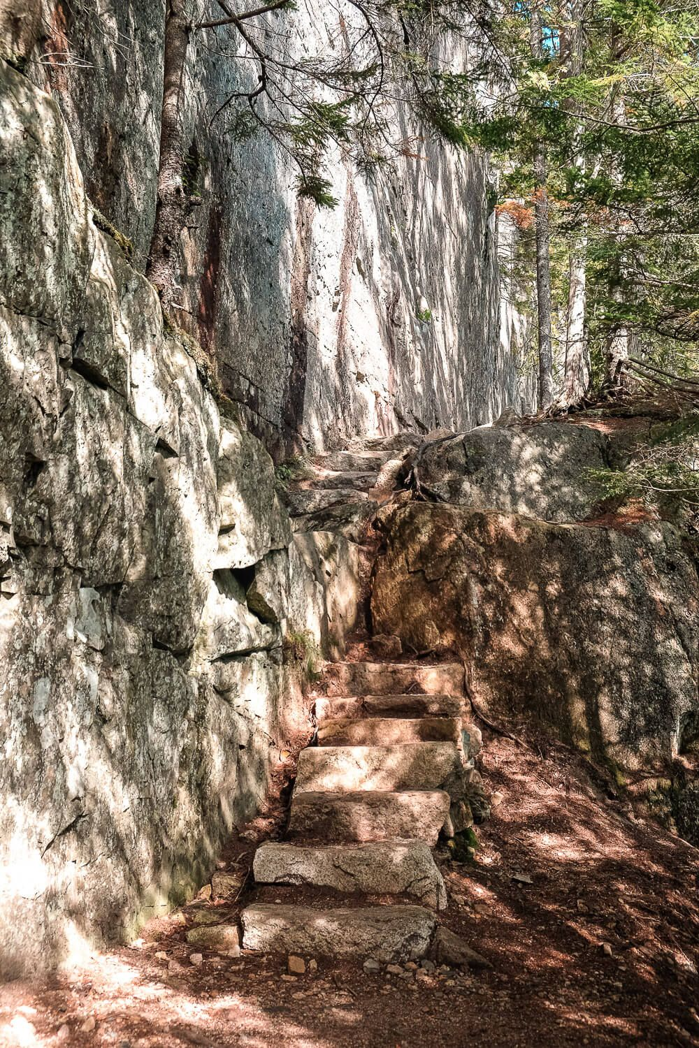 beech cliff trail