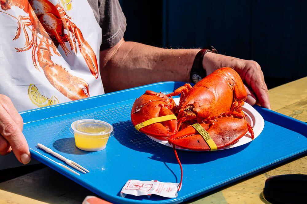best Bar Harbor lobster pounds