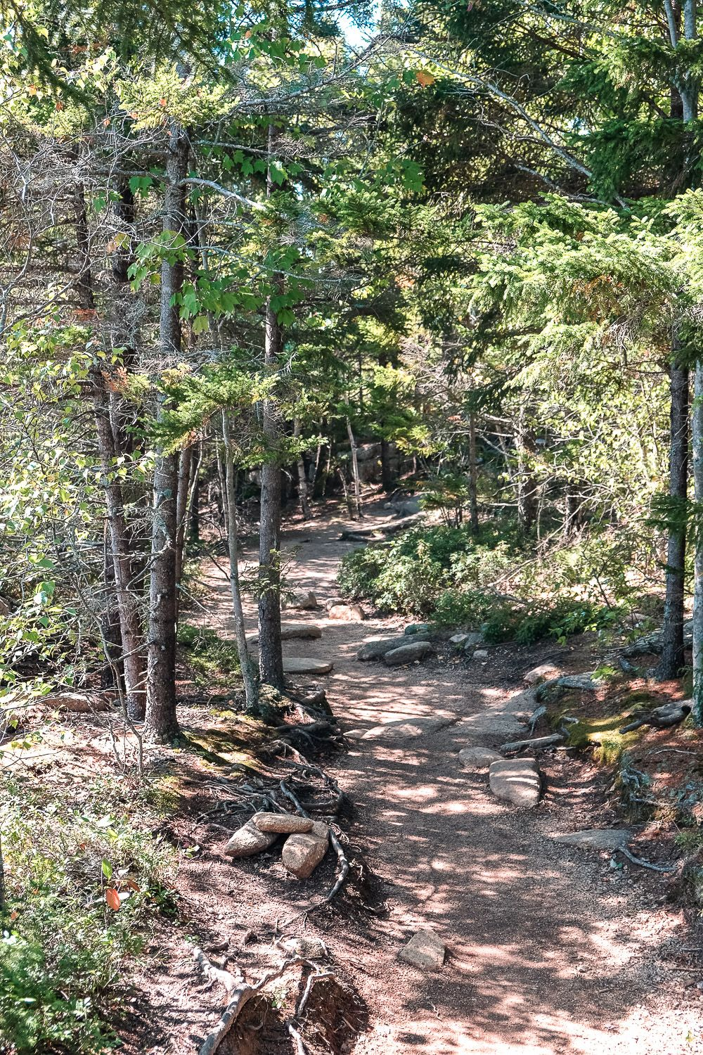 Gorham Mountain Trail