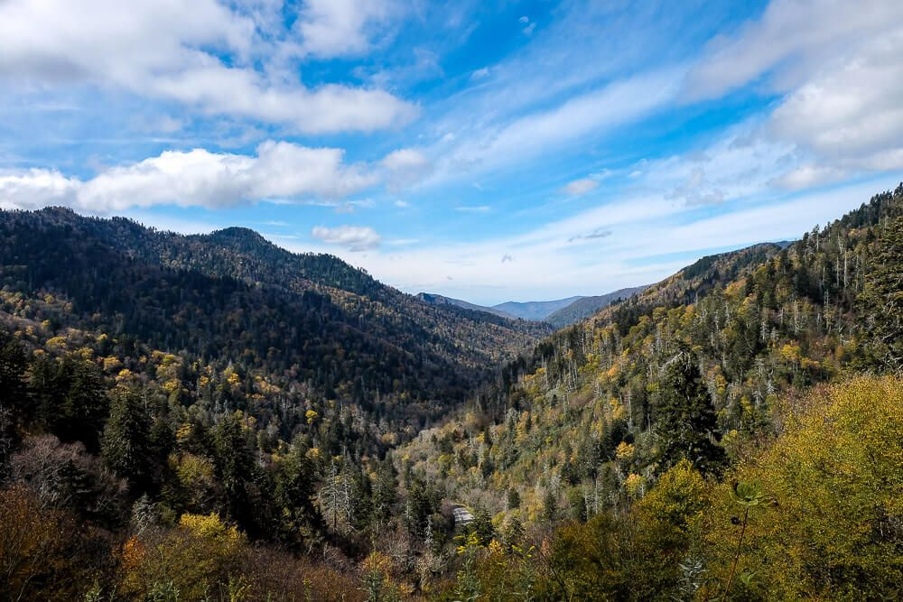 Newfound gap road - great smoky mountains