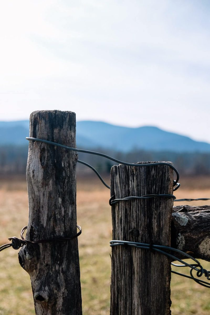 cades cove - great smoky mountains