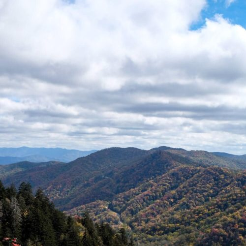 newfound gap - great smoky mountains