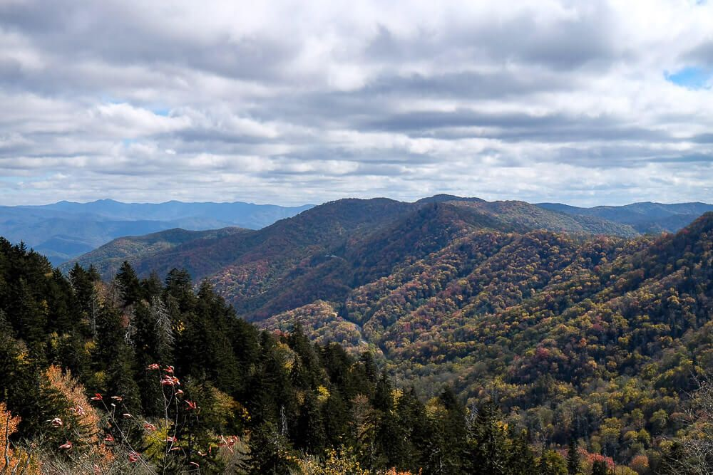 5 Awesome Things to Do in Great Smoky Mountains National Park