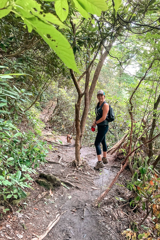 Glenn Falls Trail, Highlands NC