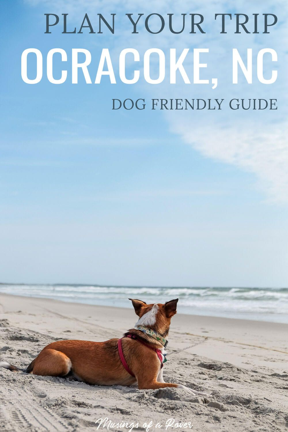 Headed to Ocracoke Island in the Outer Banks for your vacation? Discover where to eat, where to stay, and things to do in Ocracoke, NC - dog friendly included!