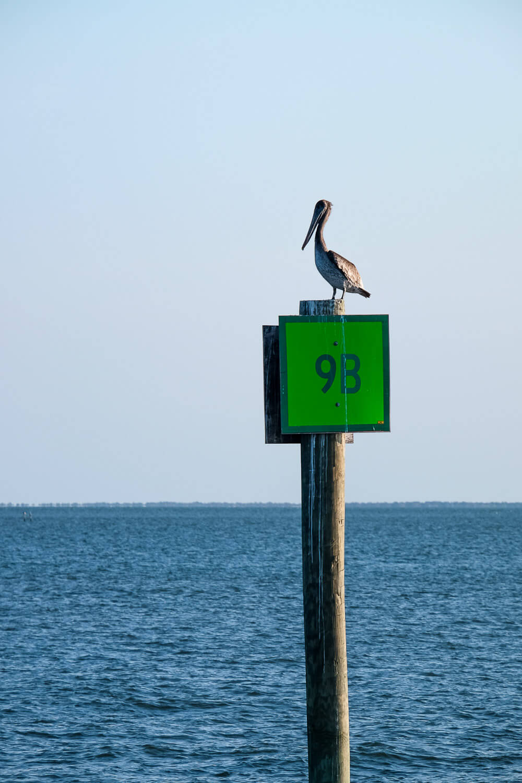 things to do in ocracoke