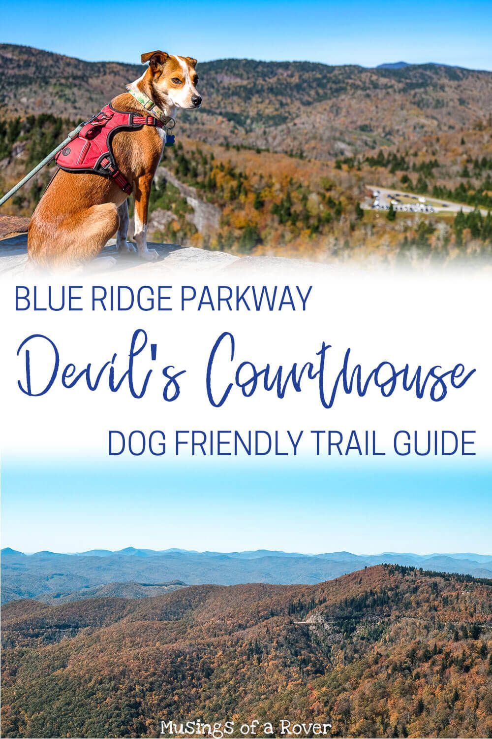 Looking for a day trip from Greenville, SC. One of the best things to do is to head to the Blue Ridge Parkway and hike this easy trail to to the top of the Devil's Courthouse. This out and back hike is less than a mile and has some of the best views in the region. And it's dog friendly!