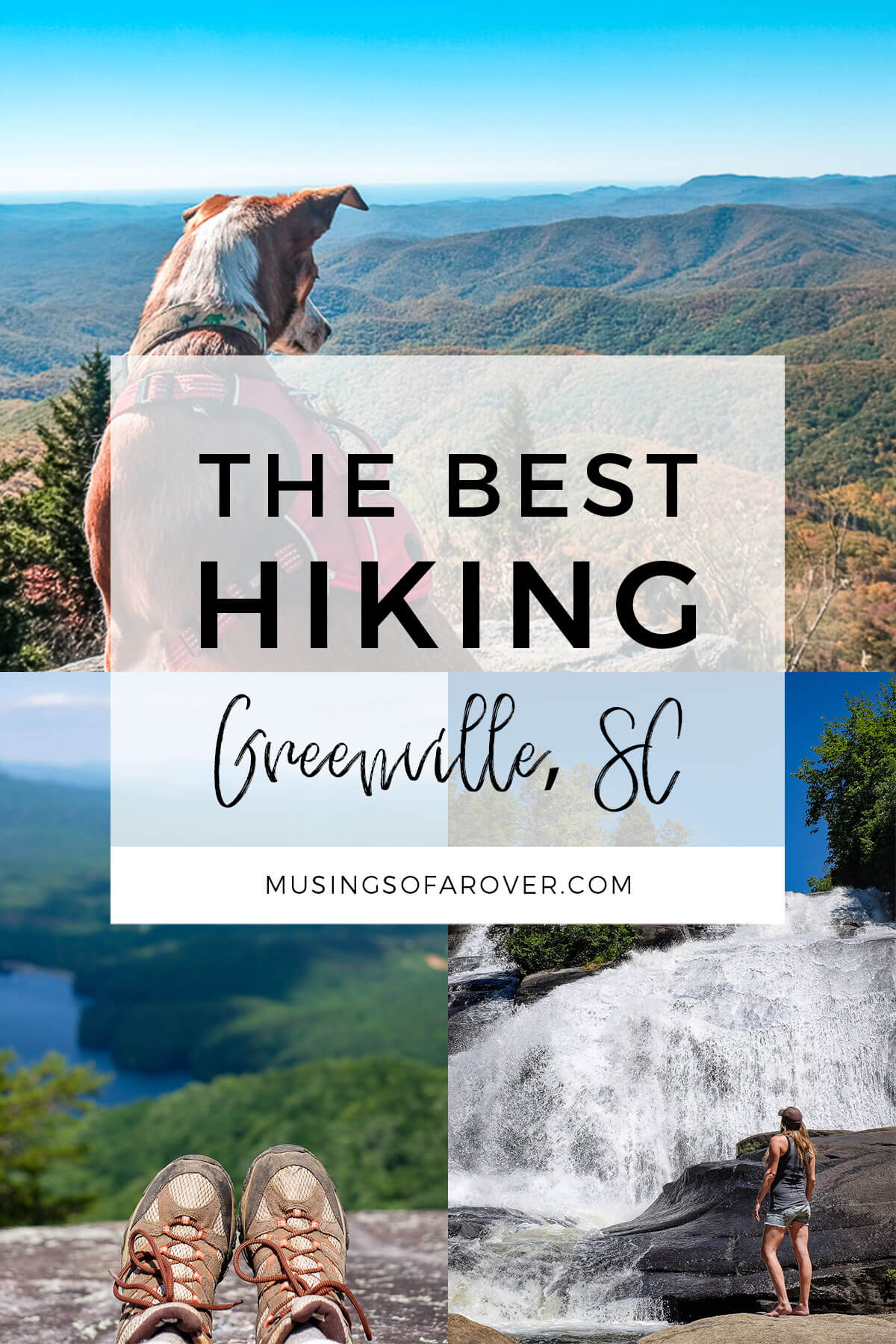Are you looking for the best trails near Greenville, SC? Discover what South Carolina's (and North Carolina's) State Parks, Forests, and Preserves have to offer!