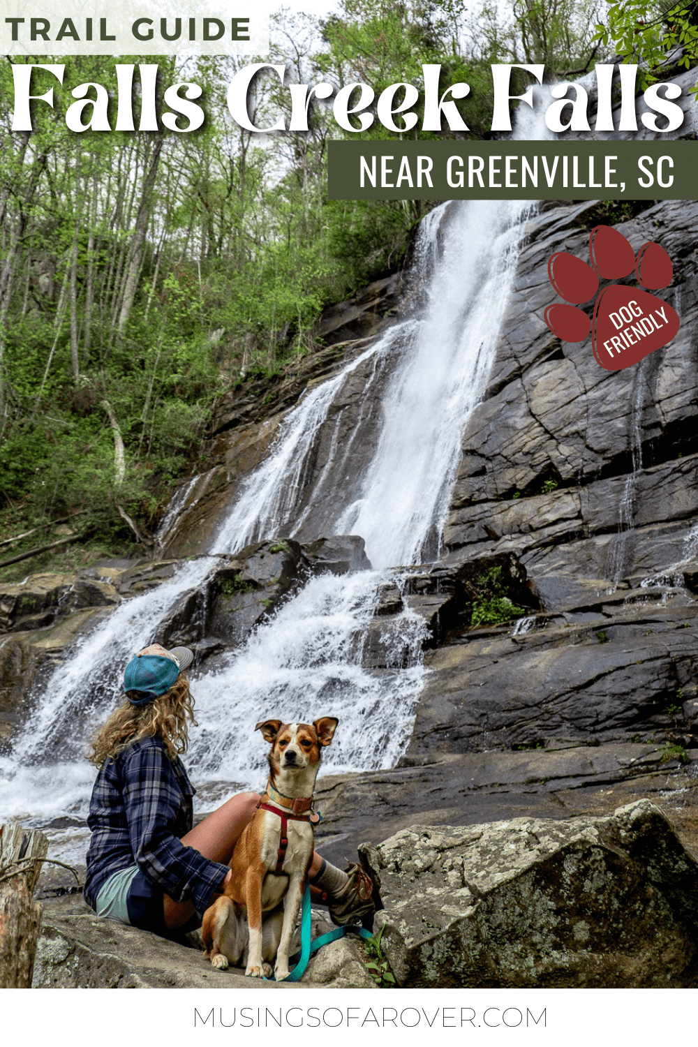 Want to visit one of the best waterfalls near Greenville, SC? Falls Creek Waterfall in the Mountain Bridge Wilderness Area makes a perfect day trip! At 125ft it's one of the most impressive waterfalls in the region. And this hike is dog friendly!