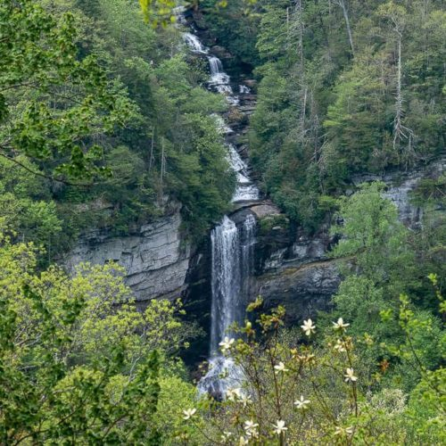 Hike to the Raven Cliff Falls Overlook [Trail Guide]