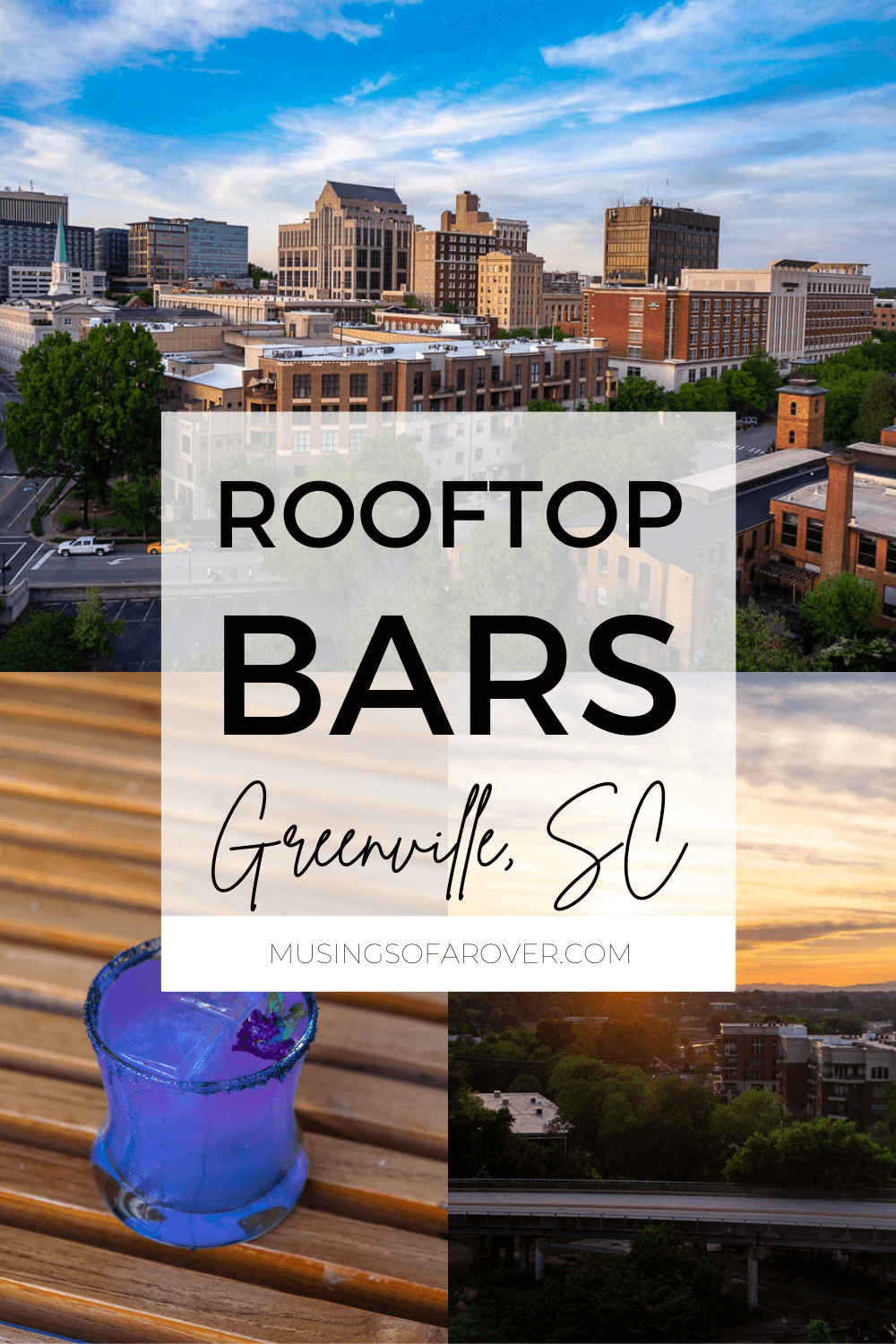 Discover the best rooftop bars in Greenville, SC! Find out which ones serve food and which ones are dog friendly.