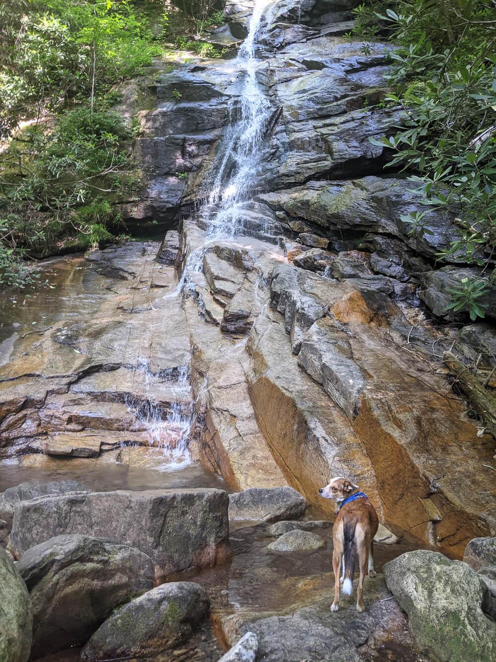 jones gap waterfall