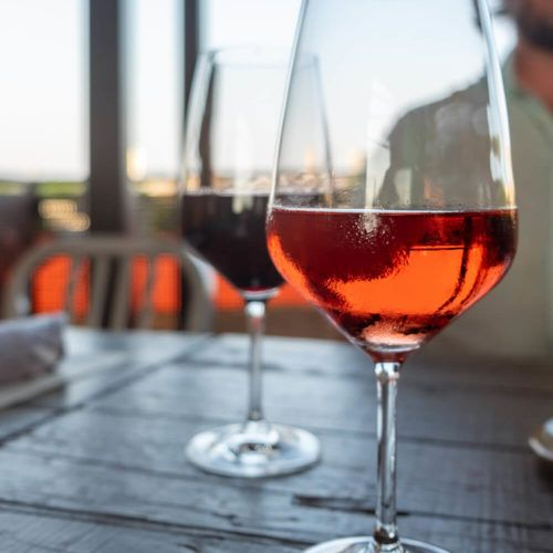 Looking for the Best Wine Bars & Wineries in Greenville, SC?